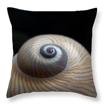 Moon Shell Throw Pillow by Carol Leigh