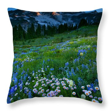Morning Majesty Throw Pillow by Mike  Dawson