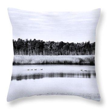 Morning Swim Throw Pillow by John Rizzuto