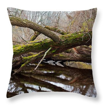 Mossy Tree Throw Pillow by Ms Judi