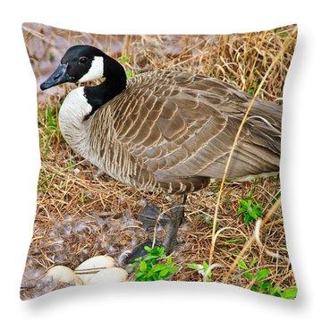 Mother Goose At Nest Throw Pillow by Susan Leggett