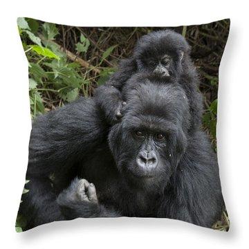 Mountain Gorilla Mother And 1.5yr Old Throw Pillow by Suzi Eszterhas