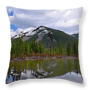 Mountain Pond Reflection Throw Pillow by Roderick Bley