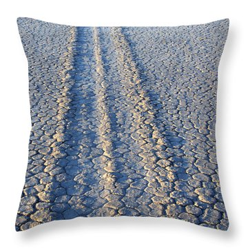 Moving And Grooving Throw Pillow by Bob Christopher