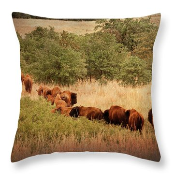 Moving On Throw Pillow by Tamyra Ayles