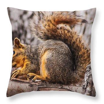 My Nut Throw Pillow by Robert Bales