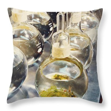 Nasa Experiment Throw Pillow by Science Source