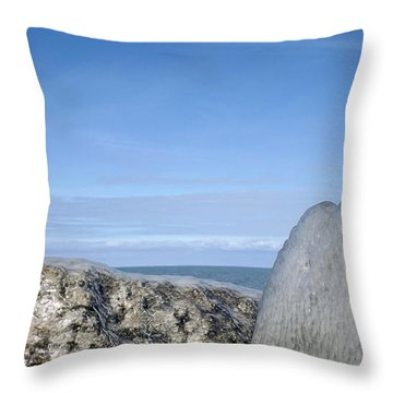 Natures Ice Sculptures 10 Throw Pillow by Rose Santuci-Sofranko