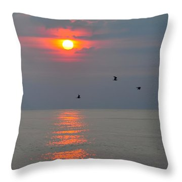 New Day Throw Pillow by Tazz Anderson
