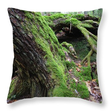 New Hampshire Usa Forest Throw Pillow by Erin Paul Donovan