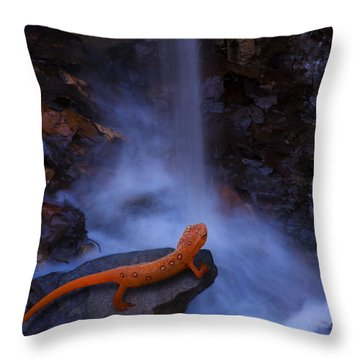 Newt Falls Throw Pillow by Ron Jones