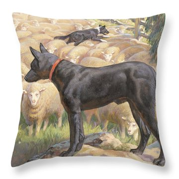 Ngm194112_782-lo, Throw Pillow by National Geographic