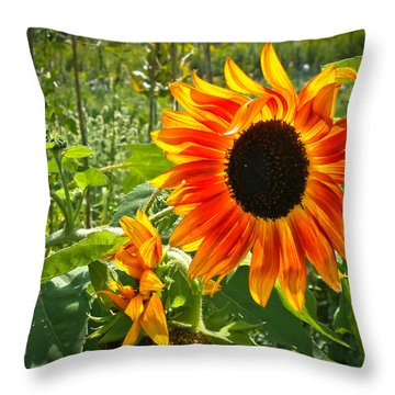 Noontime Sunflowers Throw Pillow by Jiayin Ma