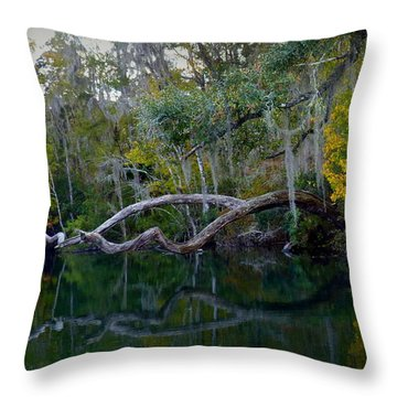 North Florida River Reflections Throw Pillow by Carla Parris