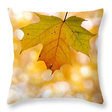 October Maple Leaf Throw Pillow by Angie Rea