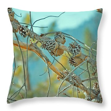 October Pine Throw Pillow by Bonnie Bruno
