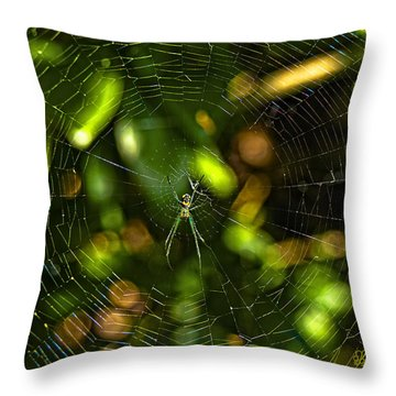 Oh The Web We Weave Throw Pillow by Barbara Middleton