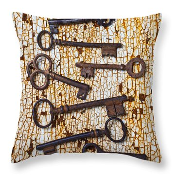 Old Keys Throw Pillow by Garry Gay