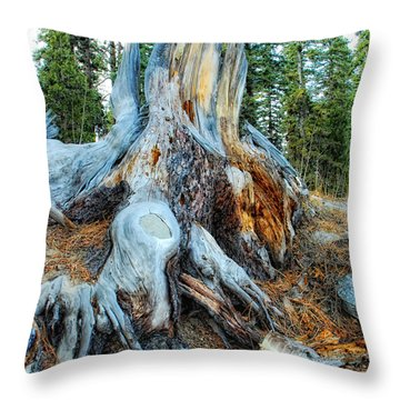 Old Warrior Throw Pillow by Donna Blackhall