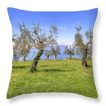 olive grove on Lake Gardan Throw Pillow by Joana Kruse