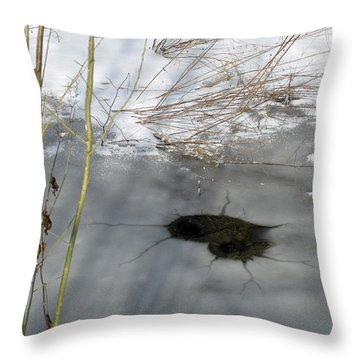 On The River. Heart In Ice 02 Throw Pillow by Ausra Huntington nee Paulauskaite