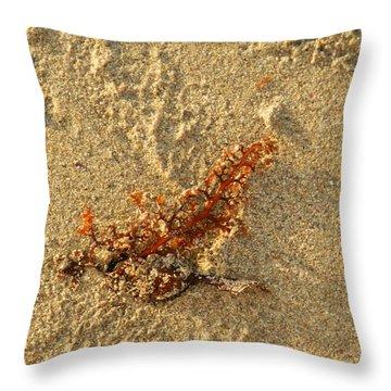 Orange Glow Throw Pillow by Leana De Villiers