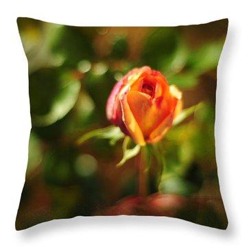 Orange Rosebud Throw Pillow by Rebecca Sherman