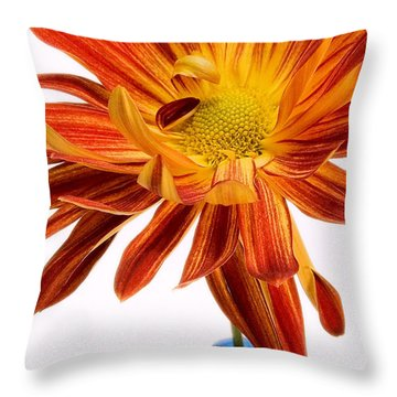 Orange You Happy Throw Pillow by Susan Smith