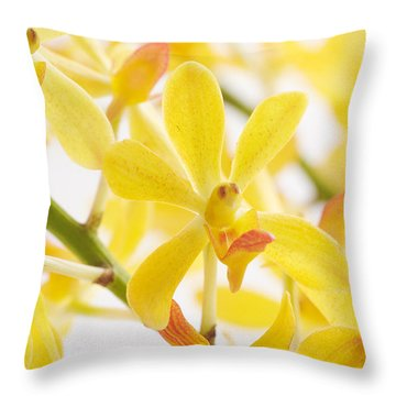 Orchid Bunch Throw Pillow by Atiketta Sangasaeng