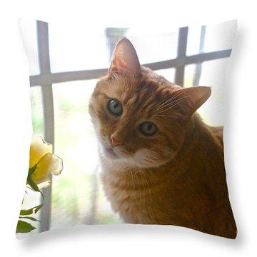 Our New Princess Throw Pillow by Byron Varvarigos
