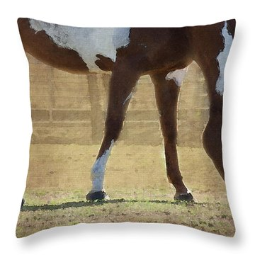 Paint Horse Throw Pillow by Betty LaRue