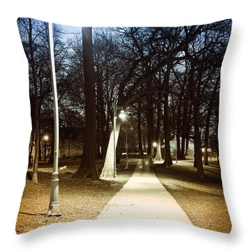 Park Path At Night Throw Pillow by Elena Elisseeva