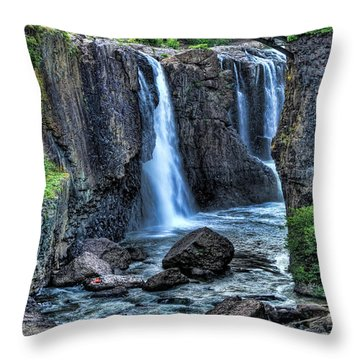 Paterson Great Falls Throw Pillow by Paul Ward