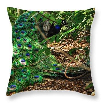 Peacock Hiding Throw Pillow by Kaye Menner