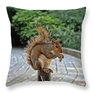 Peanuts For Lunch Throw Pillow by Jasna Buncic