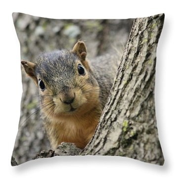 Peek A Boo Squirrel Throw Pillow by Rosanne Jordan