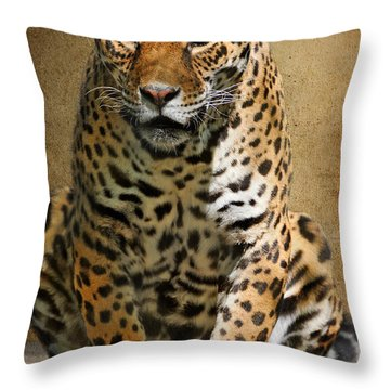 Pensive Throw Pillow by Lois Bryan