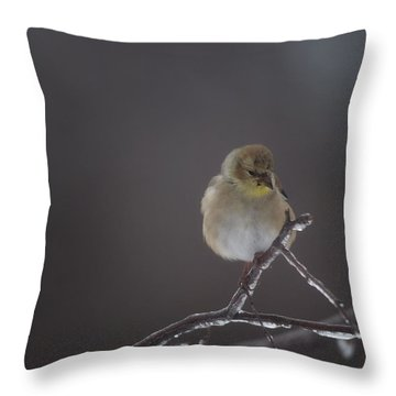 Pensive Throw Pillow by Susan Capuano