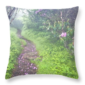 Petaled Path Throw Pillow by Rob Travis