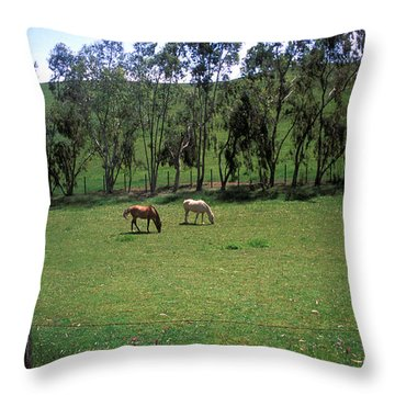 Petaluma Pasture Throw Pillow by Kathy Yates