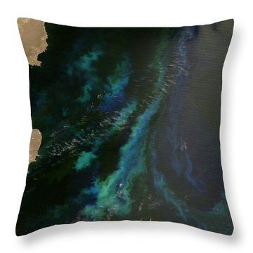 Phytoplankton Off Argentinas Coast Throw Pillow by Nasa