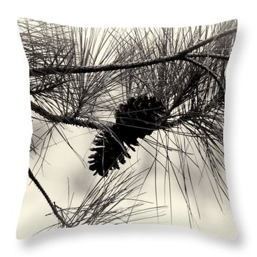 Pine Cones In The Treetops Throw Pillow by Douglas Barnard