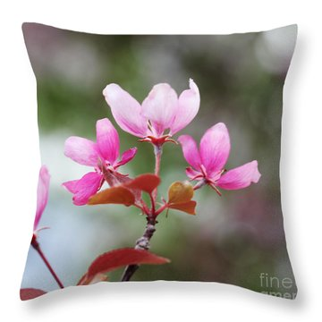 Pink Apple Blossom 2 Throw Pillow by Donna Munro
