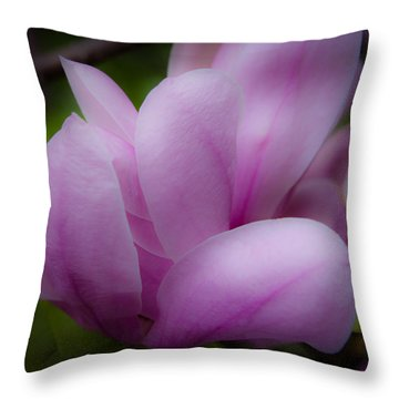 Pink Blossoms Throw Pillow by David Patterson