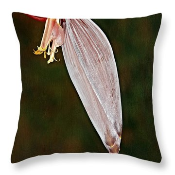 Plantain Bloom Throw Pillow by Susan Candelario