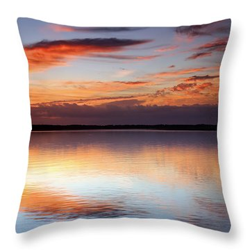 Pointing South Throw Pillow by Phill Doherty