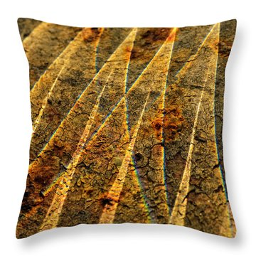 Points Of Light Throw Pillow by Susan Capuano