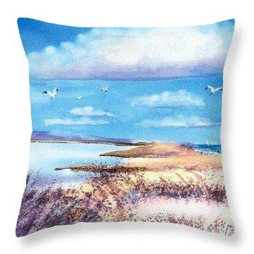 Pond At South Cape Beach Throw Pillow by Joseph Gallant