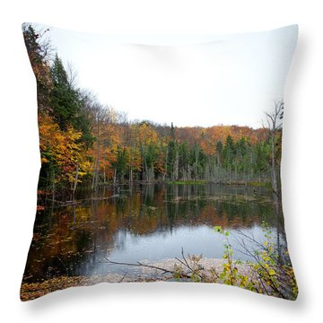 Pond On Limekiln Road In Inlet New York Throw Pillow by David Patterson