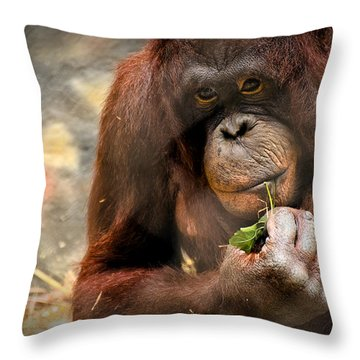 Pondering Throw Pillow by Mark Papke